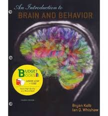 Introduction to Brain and Behavior:   2012 edition cover