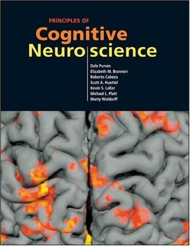 Principles of Cognitive Neuroscience   2007 edition cover