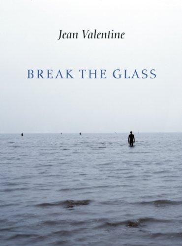 Break the Glass   2010 edition cover