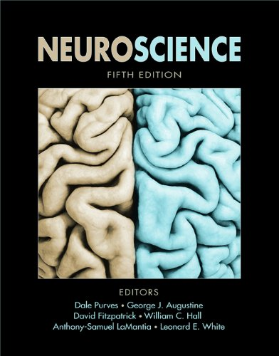 Neuroscience  5th 2010 (Revised) 9780878936953 Front Cover