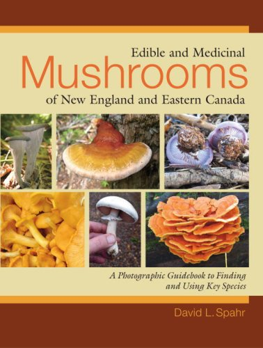 Edible and Medicinal Mushrooms of New England and Eastern Canada A Photographic Guidebook to Finding and Using Key Species  2009 9781556437953 Front Cover