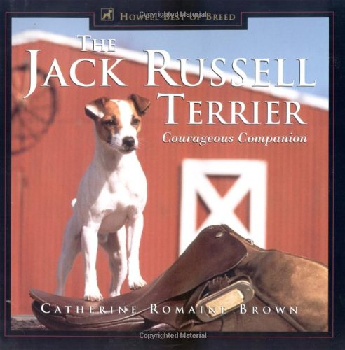 Jack Russell Terrier Courageous Companion  1999 9780876051955 Front Cover