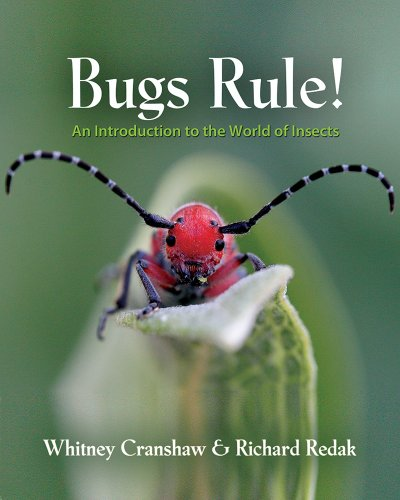 Bugs Rule! An Introduction to the World of Insects   2013 edition cover