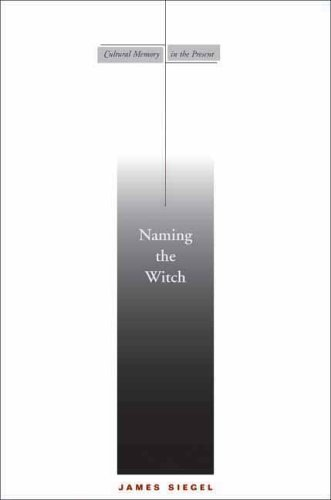 Naming the Witch   2006 edition cover