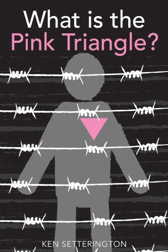 Branded by the Pink Triangle   2013 edition cover