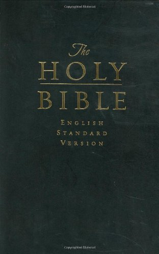 Holy Bible   2004 edition cover