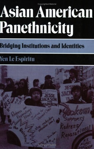 Asian American Panethnicity Bridging Institutions and Identities N/A edition cover