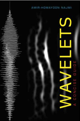 Wavelets A Concise Guide  2012 edition cover