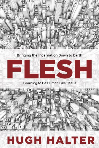 Flesh Bringing the Incarnation down to Earth N/A edition cover