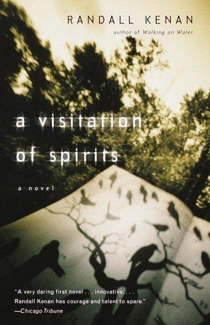 Visitation of Spirits A Novel  2000 edition cover