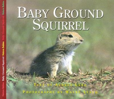 Baby Ground Squirrel   2003 9781550417975 Front Cover