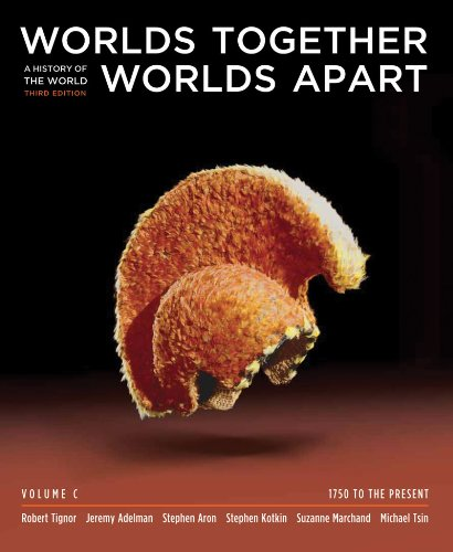 Worlds Together, Worlds Apart A History of the World - 1750 to the Present 3rd 2011 9780393934977 Front Cover