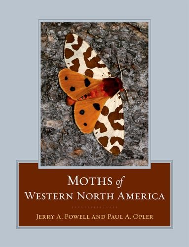 Moths of Western North America   2009 9780520251977 Front Cover