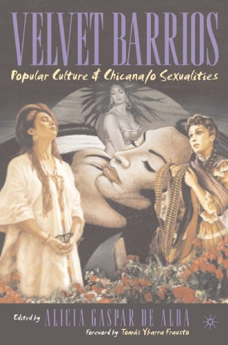 Velvet Barrios Popular Culture and Chicana/o Sexualities  2003 (Revised) edition cover