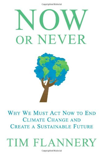 Now or Never Why We Must Act Now to End Climate Change and Create a Sustainable Future N/A edition cover