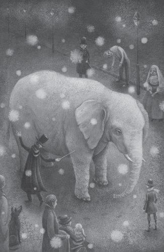 Magician's Elephant  N/A edition cover