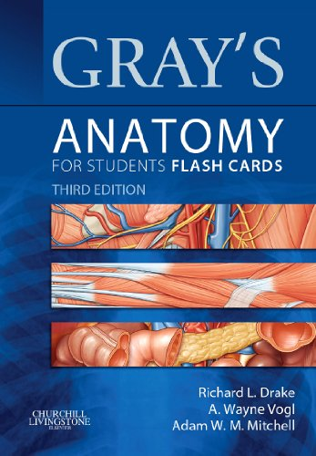 Gray's Anatomy for Students Flash Cards With STUDENT CONSULT Online Access 3rd 9781455758982 Front Cover