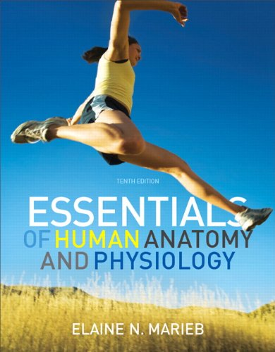 Essentials of Human Anatomy and Physiology  10th 2012 (Revised) 9780321695987 Front Cover