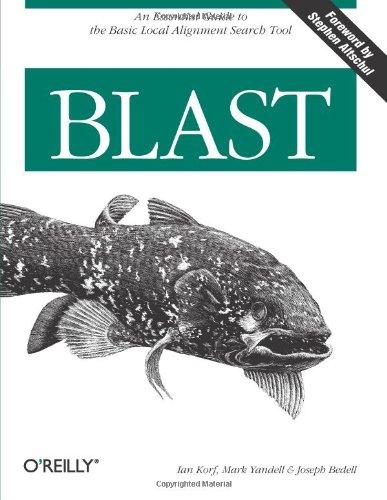 Blast   2003 edition cover