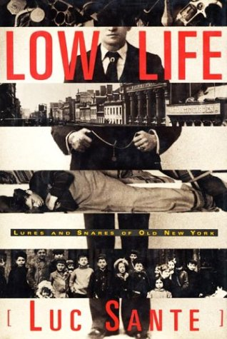 Low Life Lures and Snares of Old New York N/A edition cover