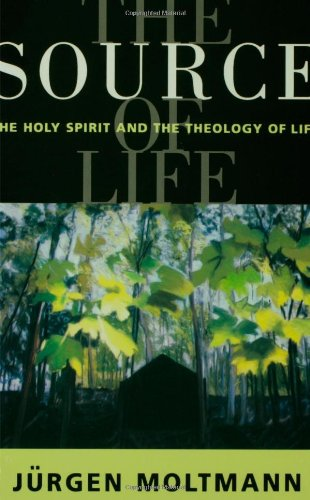 Source of Life The Holy Spirit and the Theology of Life N/A edition cover