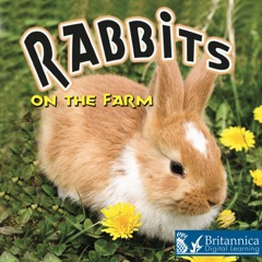 On the Farm Rabbits on the Farm 2013 9781615359042 Front Cover