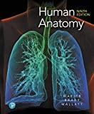 Human Anatomy:
