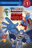DC Super Friends Flying High 2008 9780375852084 Front Cover