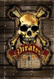 Pirates Scourge of the Seas 2008 9781402763113 Front Cover