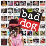 Bad Dog Wall Calendar 2012 2011 9780761162209 Front Cover