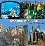 Amazing Windows 2011 9781466212220 Front Cover