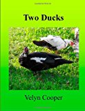 Two Ducks 2013 9781489503220 Front Cover
