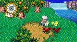 Case art for Animal Crossing: City Folk