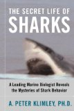 Secret Life of Sharks A Leading Marine Biologist Reveals the Mysteries of Shark Behavior 1st 2007 9781416578338 Front Cover
