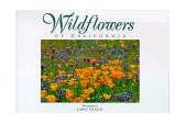 Wildflowers of California Twenty Postcards 1995 9780944197356 Front Cover
