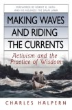 Making Waves and Riding the Currents Activism and the Practice of Wisdom 2008 9781576754429 Front Cover