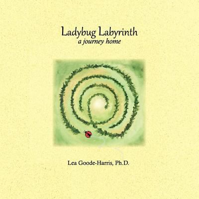 Ladybug Labyrinth 2011 9780976205449 Front Cover