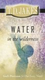 Water in the Wilderness : God's Provision for Our Every Need 2008 9780768426458 Front Cover