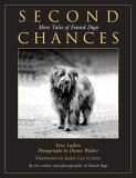 Second Chances More Tales of Found Dogs 2005 9781592287475 Front Cover