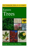 Field Guide to Eastern Trees Eastern United States and Canada, Including the Midwest 2nd 1998 9780395904558 Front Cover