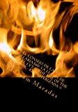 Consejo de la XII: Tsillaria360: la Llama de Fuego el Lyt and the Rise of the Phoenix - Remasterizada (c) 2012 9781478353584 Front Cover