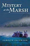 Mystery at the Marsh 2013 9781491821602 Front Cover