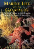 Marine Life of the Galapagos The Diver's Guide to Fish, Whales, Dolphins and Marine Invertebrates 2nd 2006 9789622177673 Front Cover