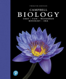 CAMPBELL BIOLOGY 9780135188743 Front Cover