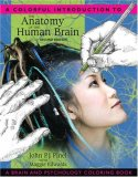 Colorful Introduction to the Anatomy of the Human Brain  cover art
