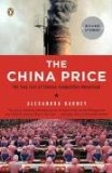 China Price The True Cost of Chinese Competitive Advantage 2009 9780143114864 Front Cover