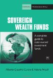 Sovereign Wealth Funds A Concise Guide to State-Owned Investment Funds 2010 9781906659967 Front Cover