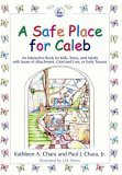 Safe Place for Caleb An Interactive Book for Kids, Teens and Adults with Issues of Attachment, Grief, Loss or Early Trauma 2005 9781843107996 Front Cover