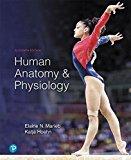 Human Anatomy & Physiology: